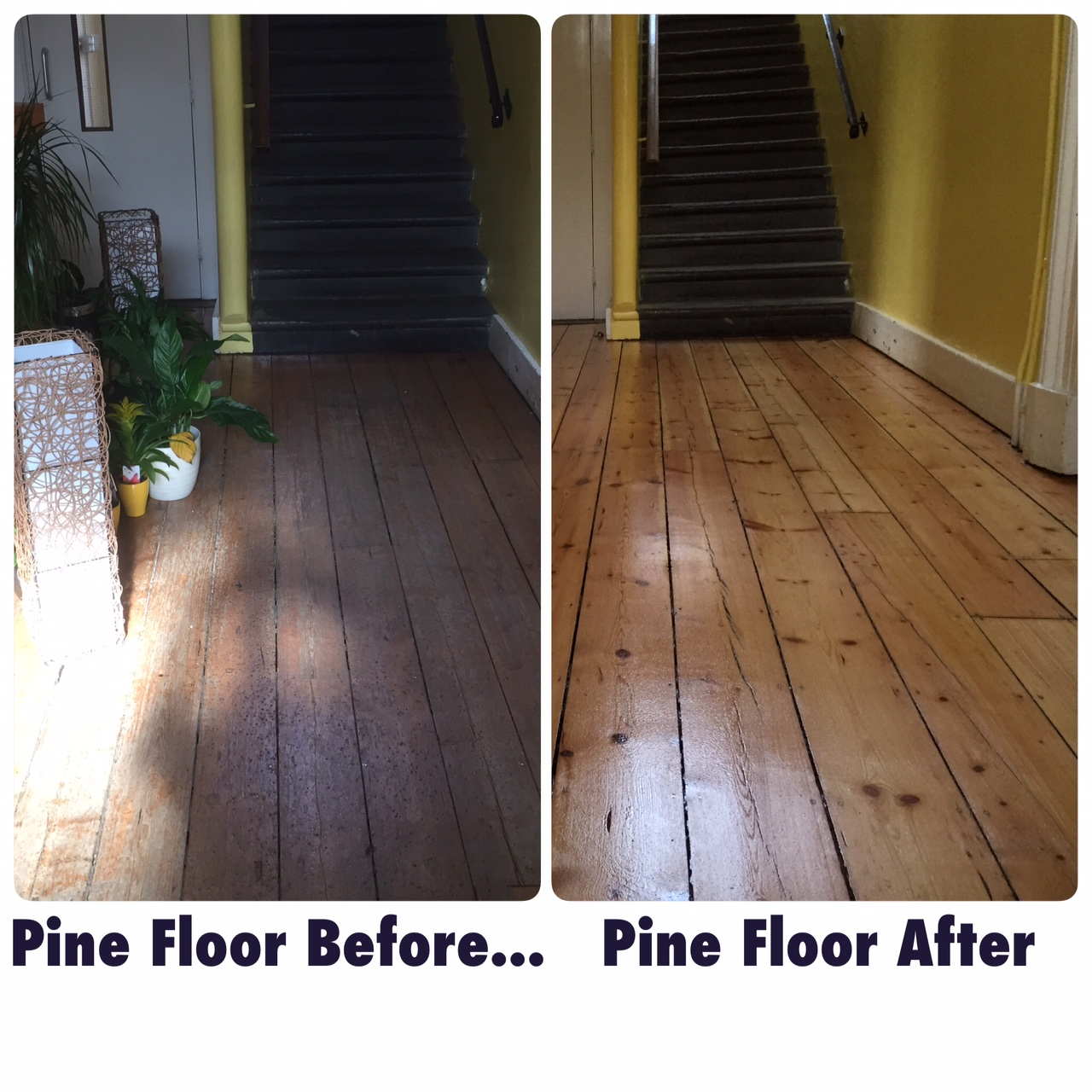 Pine Wood Floor Before and After